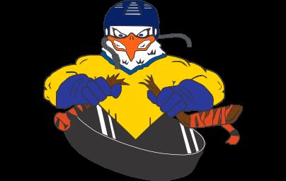 SkiHockey4-04x256